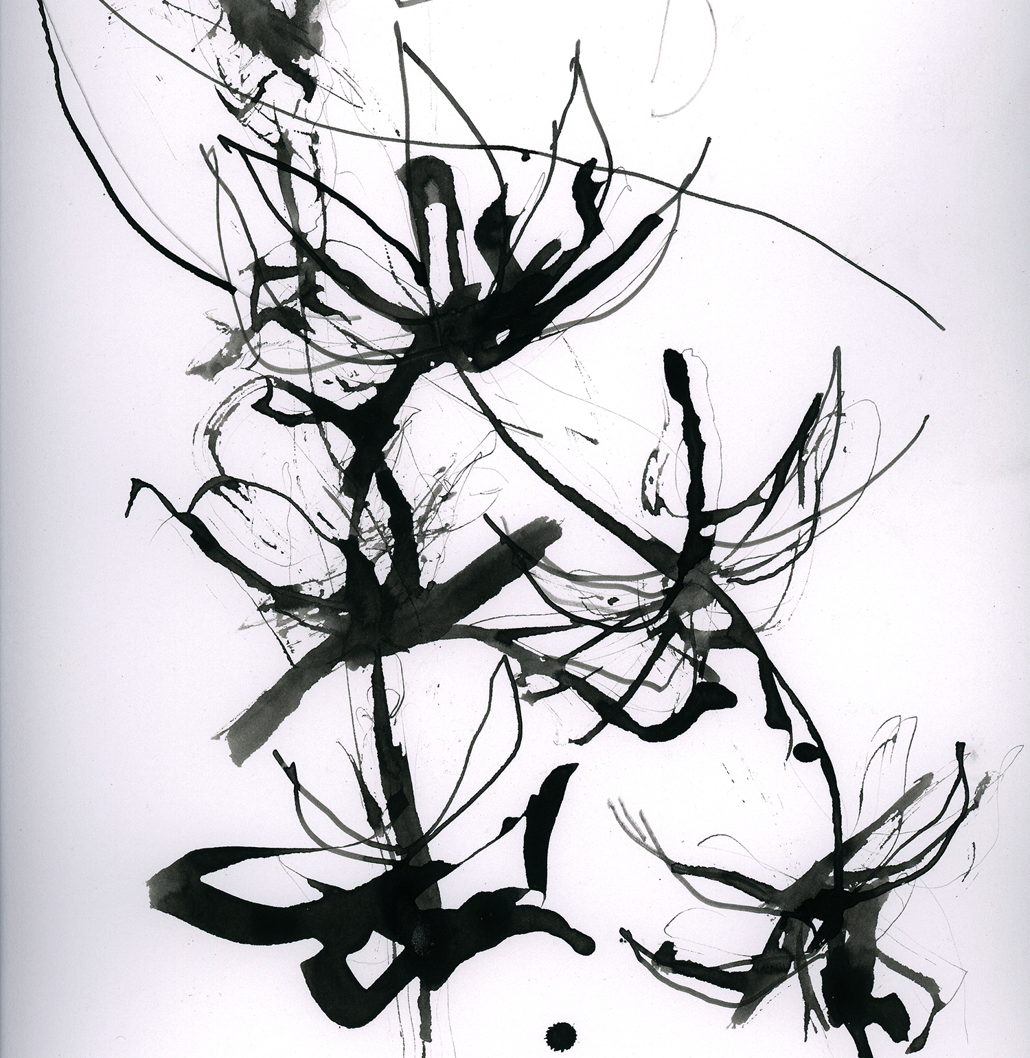 Gestural drawing pen & ink. Katharine Dickinson